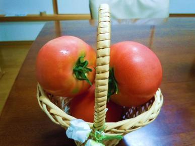Tomato_060_2